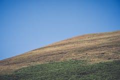 Il parco nazionale di punta del distretto in Derbyshire, Regno Unito Immagine Stock Libera da Diritti