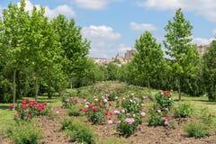 Il parco pubblico Izvor a Bucarest Fotografie Stock Libere da Diritti