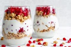 Il parfait casalingo del yogurt con granola ed il melograno fruttificano Immagini Stock