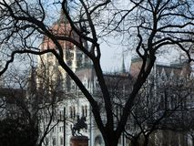 Il Parlamento ungherese a Budapest fotografie stock libere da diritti