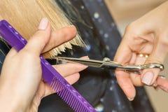 Il parrucchiere del barbiere del primo piano taglia i capelli biondi in un salone di bellezza vista posteriore con luce solare fotografia stock