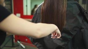Il parrucchiere sistema la conclusione di lungamente ed i capelli di spaccatura con un pettine e le forbici stock footage