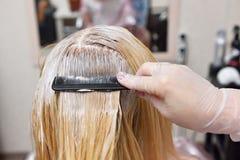 Il parrucchiere spalma la pittura sui suoi capelli di pettine, per il co Fotografia Stock Libera da Diritti