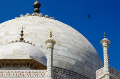 Particolare del Taj Mahal Fotografia Stock