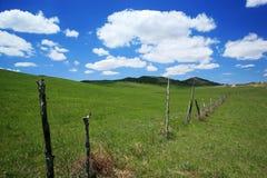 Il pascolo del recinto chiuso di Mulan Fotografie Stock