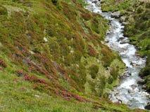 Il passaggio di Spluegen con un fiume in Svizzera Immagini Stock