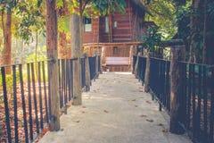 Il passaggio pedonale concreto o la via conduce al cottage di legno circondato con gli alberi verdi e la luce solare Fotografia Stock Libera da Diritti