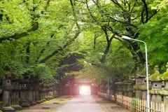 Il passaggio pedonale dentro il santuario di Toshogu Immagini Stock Libere da Diritti