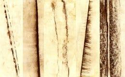 Il pastello segna la raccolta, spazzole del gesso Immagine Stock Libera da Diritti