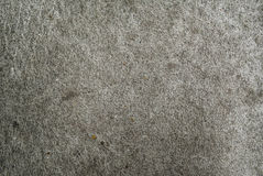 il pavimento del cemento Immagini Stock