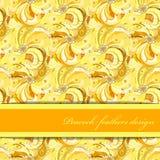 Il pavone giallo arancione mette le piume al fondo del modello Posto del testo Immagine Stock Libera da Diritti