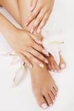 Il pedicure del manicure con la fine del giglio del fiore su isolata su forma perfetta bianca passa i piedi Fotografia Stock