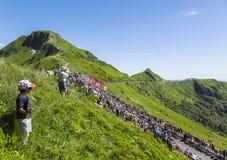 Il Peloton in montagne - Tour de France 2016 immagini stock libere da diritti