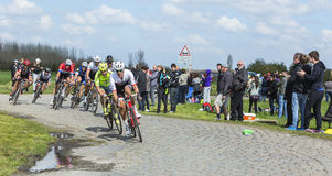 Il Peloton - Parigi Roubaix 2016 Fotografie Stock Libere da Diritti