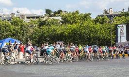 Il Peloton a Parigi - Tour de France 2016 Fotografia Stock