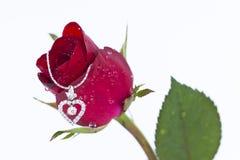 Il pendente del cuore con il diamante ed il colore rosso è aumentato Fotografia Stock
