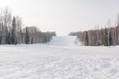 Il pendio del pattino Pendio dello sci nella bella foresta di inverno della foresta nel taiga Alberi sotto la neve Pista per gli  Fotografie Stock
