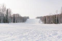 Il pendio del pattino Pendio dello sci nella bella foresta di inverno della foresta nel taiga Alberi sotto la neve Pista per gli  Fotografia Stock