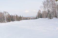 Il pendio del pattino Pendio dello sci nella bella foresta di inverno della foresta nel taiga Alberi sotto la neve Pista per gli  Immagini Stock Libere da Diritti