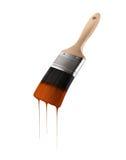 Il pennello ha caricato con colore marrone che gocciola fuori dalle setole Fotografie Stock Libere da Diritti