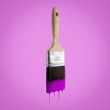Il pennello ha caricato con colore porpora che gocciola fuori dalle setole Immagini Stock