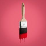 Il pennello ha caricato con colore rosso che gocciola fuori dalle setole Fotografia Stock
