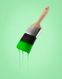 Il pennello ha caricato con colore verde che gocciola fuori dalle setole Fotografia Stock Libera da Diritti