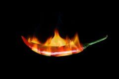 Il pepe di peperoncino rosso rovente brucia in fuoco Fotografia Stock Libera da Diritti