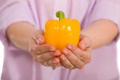 Il pepe giallo con acqua cade in mani femminili Fotografia Stock Libera da Diritti