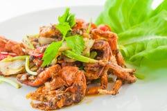 Il peperoncino rosso ha fritto il granchio molle con peper nero, cuscinetto Prik Dum tailandese di Nim di cacca Fotografia Stock