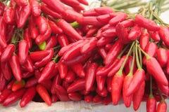 Il peperoncino rosso ha venduto in una stalla del mercato dell'alimento immagini stock