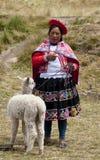 Il Perù - donna locale con alpaga Fotografia Stock