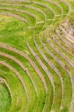 Il Perù, Inca Terraces di Moray fotografie stock libere da diritti