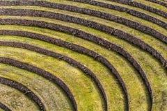 Il Perù, Moray, terrazzi antichi della circolare di inca. Il probabile là è il laboratorio di inche dell'agricoltura Fotografia Stock