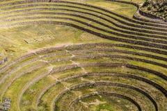 Il Perù, Moray, terrazzi antichi della circolare di inca. Il probabile là è il laboratorio di inche dell'agricoltura Fotografie Stock