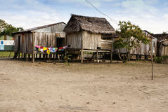 Il Perù, paesaggio peruviano dell'Amazonas. Il presente della foto tipico dentro fotografia stock