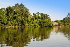 Il Perù, paesaggio peruviano dell'Amazonas. Il presente ind tipico della foto immagini stock