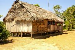 Il Perù, paesaggio peruviano dell'Amazonas. Il presente ind tipico della foto fotografia stock libera da diritti