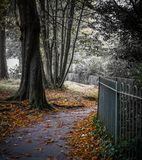 Il percorso in autunno attraverso il parco fotografia stock libera da diritti