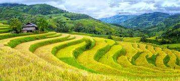 Il percorso conduce giù i terrazzi della collina Fotografie Stock Libere da Diritti