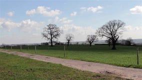 Il percorso della campagna sistema il cielo blu degli alberi - ambiti di provenienza inglesi selvaggi naturali archivi video