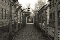 Il percorso? di amore - piedi a forma di con i cuori Fotografie Stock Libere da Diritti