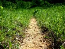 Il percorso? di amore - piedi a forma di con i cuori Immagini Stock Libere da Diritti