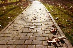 Il percorso di autunno è pavimentato con i ciottoli Immagine Stock