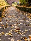 Il percorso di autunno conduce al ponte Immagine Stock