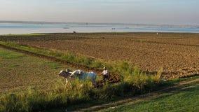 Il percorso di vita del pescatore e l'agricoltore al fiume parteggiano in Amarapura Mandalay, Myanmar con la luce meravigliosa de Fotografia Stock Libera da Diritti