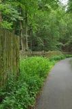 Il percorso e recinta il legno immagini stock libere da diritti