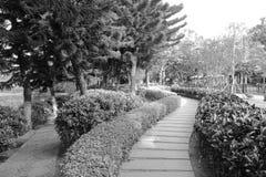 Il percorso nel campus universitario di xiamen, immagine in bianco e nero Fotografia Stock Libera da Diritti