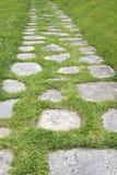 Il percorso nel giardino Fotografia Stock
