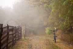 Il percorso nella foresta di autunno e nel hardtail della bici Vada in bicicletta la menzogne sulla terra nella foresta Fotografie Stock